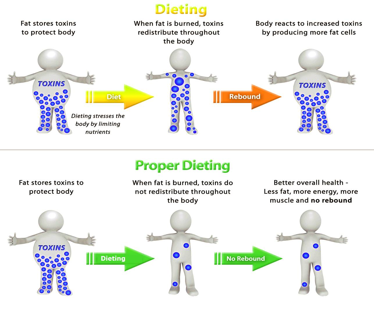 weight-loss-diagram
